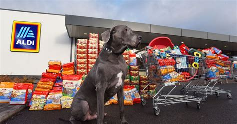 Aldi launches dog food range with help of 16-stone
