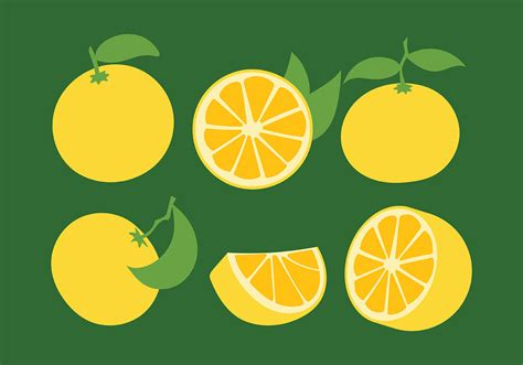 Clementine Vector Icons - Download Free Vectors, Clipart
