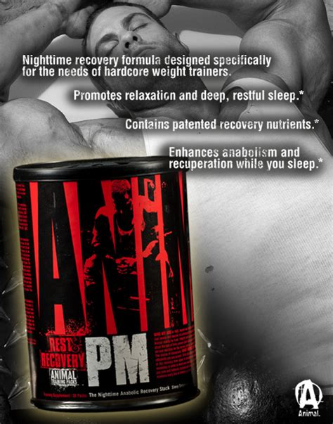Animal PM by Universal Nutrition at Bodybuilding